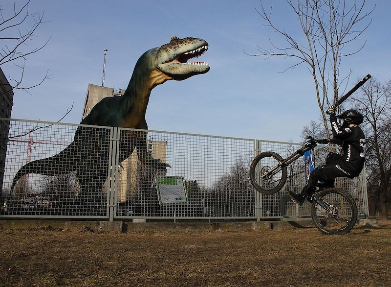 恐龙展示-自贡鸿鹤恐龙