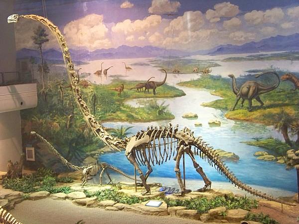 恐龙展示-自贡鸿鹤彩灯艺术展出有限公司